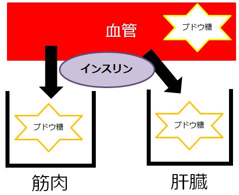 SnapCrab_NoName_2015-12-14_13-59-3_No-00
